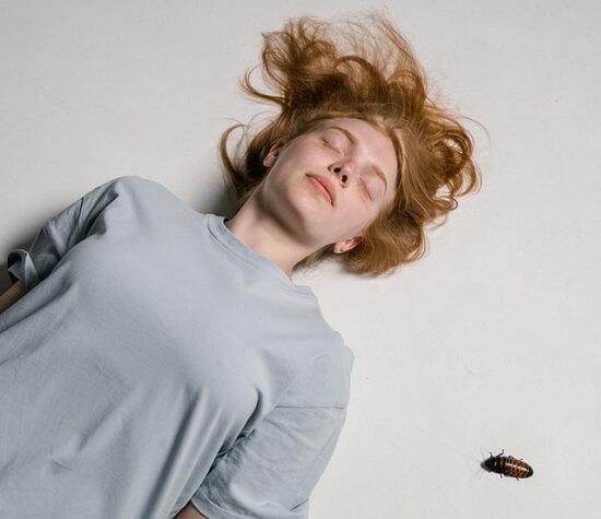 Cafard de type blatte qui se promène près d'une femme endormie