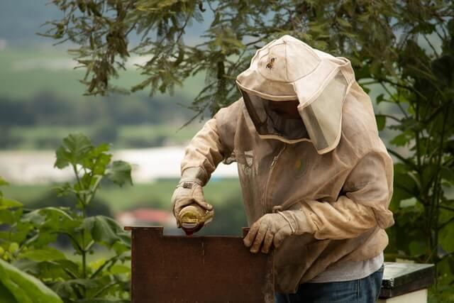 Combinaison d'apiculteur pour entretenir la ruche