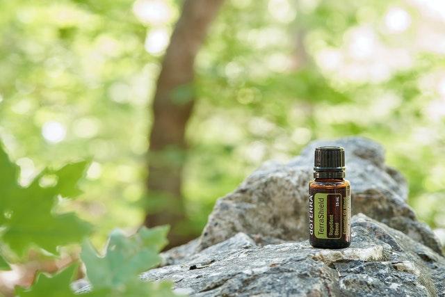 Certaines huiles essentielles sont des efficaces répulsifs anti-moustiques