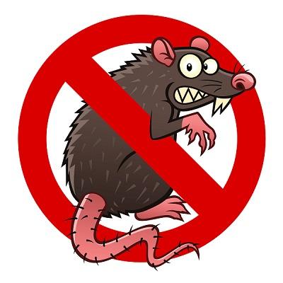 Logo anti rat